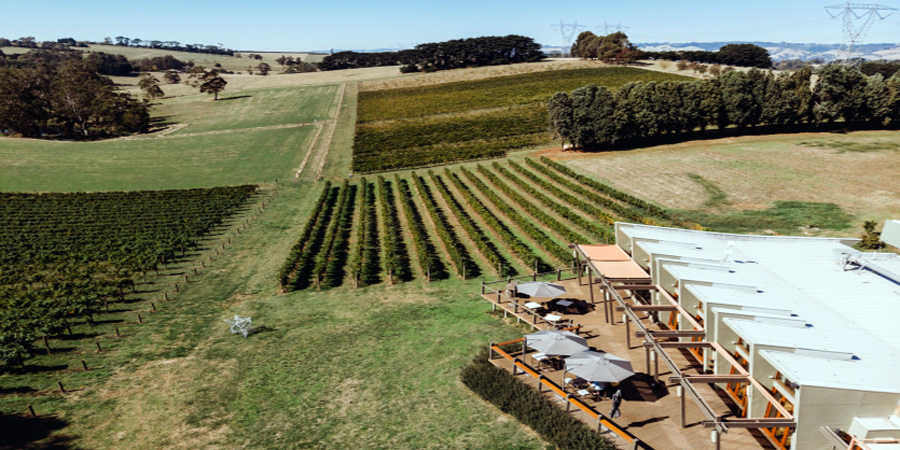 Friends of Gippsland Farmers Daughters x Hogget Kitchen